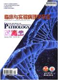 临床与实验病理学杂志期刊